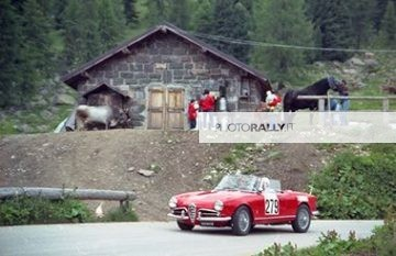 Stella Alpina 1988 (auto storiche) - Vicentini